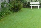 Acton Park WA Lawn and turf 2