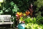Acton Park WA Tropical landscaping 11