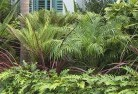 Acton Park WA Tropical landscaping 2