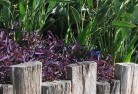 Acton Park WA Tropical landscaping 3