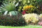 Acton Park WA Tropical landscaping 9